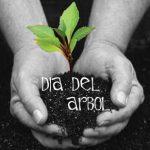 Día Mundial Del Árbol 2014
