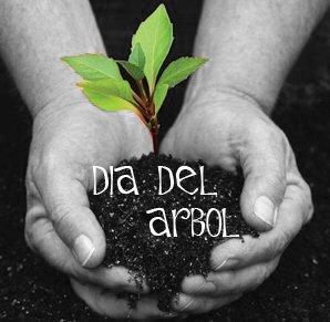 Día Mundial Del Árbol 2019